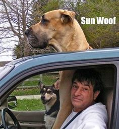 Sun woof